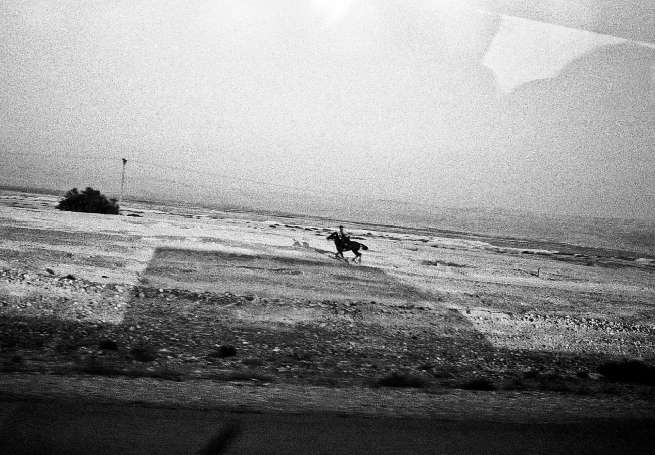 © Alina Tarabarinova / Egypt / 2013